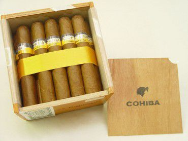 Cohiba Robustos / 25er Kiste