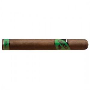 Corrida Brazil Toro+ Zigarre